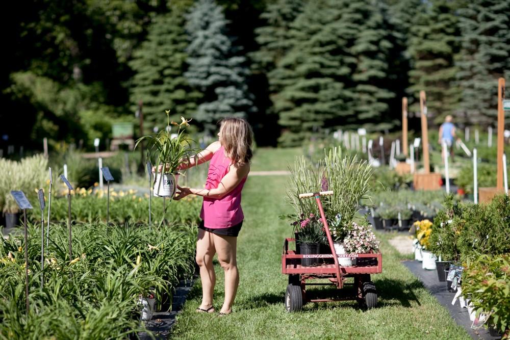 Perennial Grower Seacoast NH