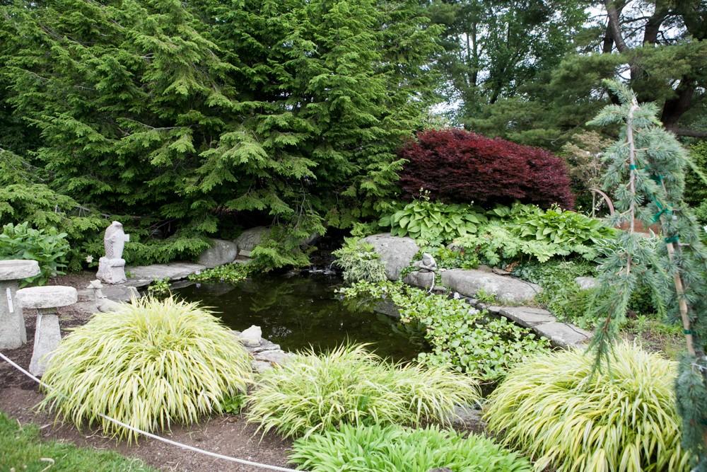 Rock garden koi pond Seacoast NH